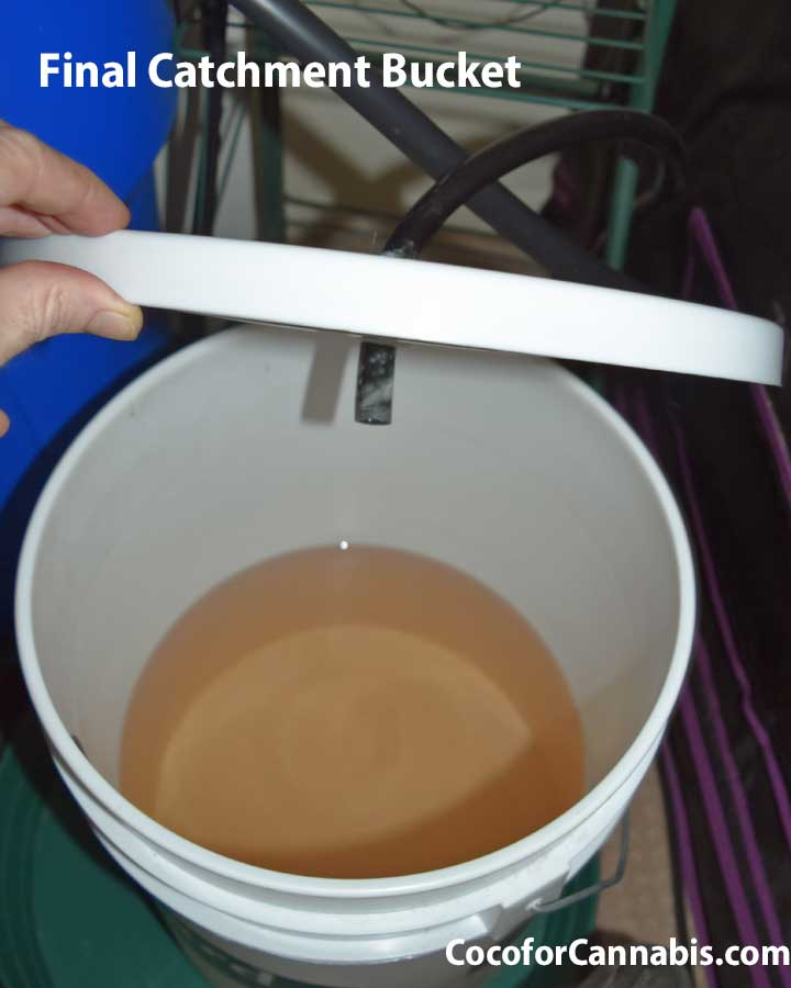 Catchment bucket for automatic drainage system