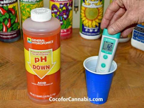 Measure and Adjust pH for growing cannabis