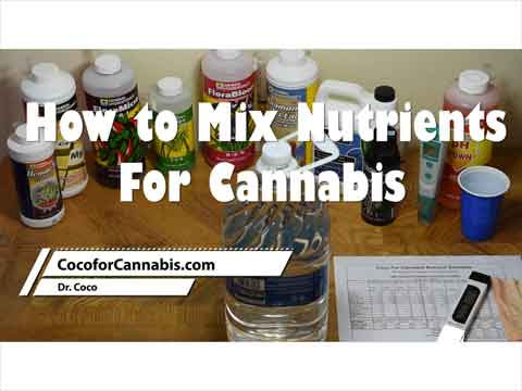 How to Mix nutes for Cannabis