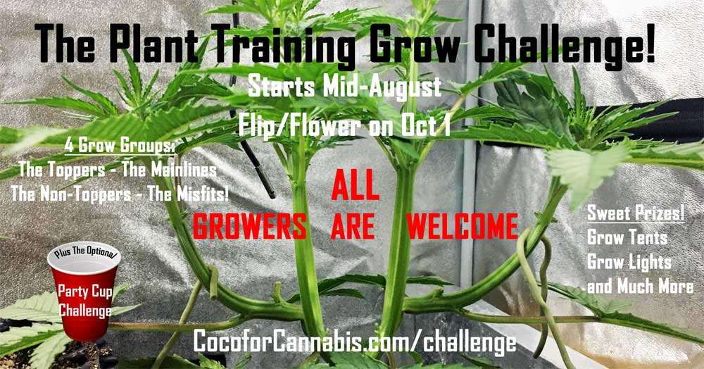 Plant Training Grow Challenge Invitation