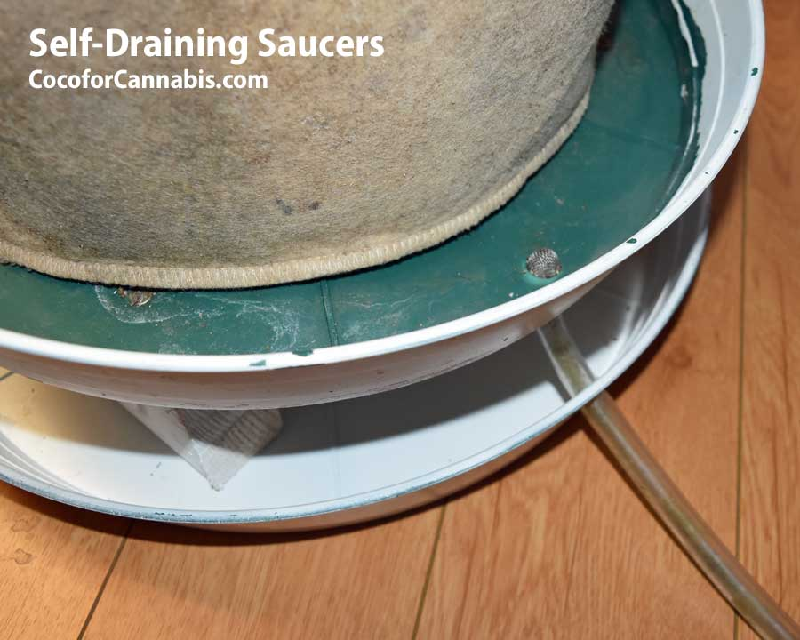Looking down on self draining saucer
