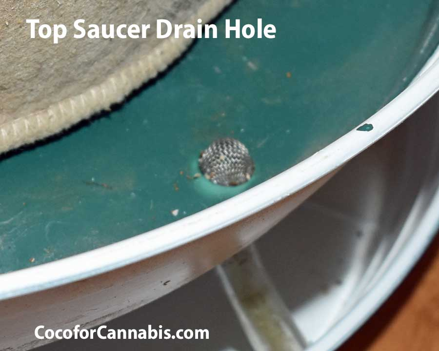 Top Saucer Drain Hole