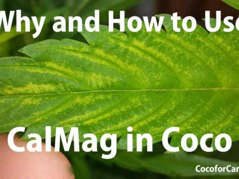 Why and How to use CalMag in Coco