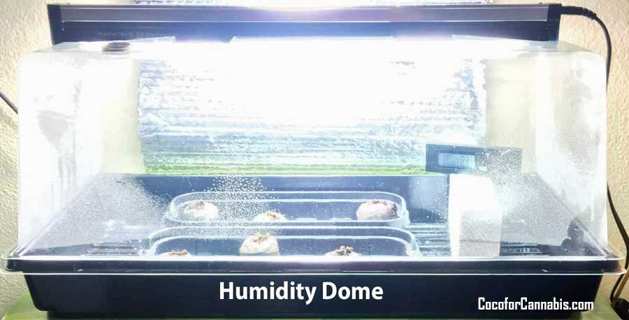 Humidity Dome for Cannabis