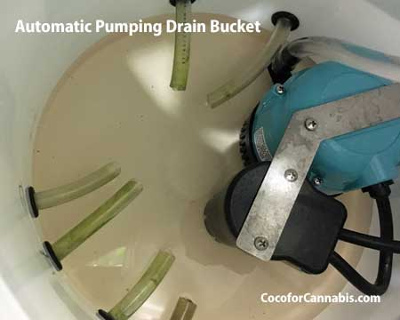 automatic drainage system for cannabis