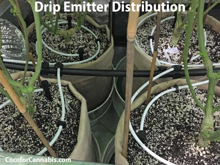 Guide to automatic watering systems for indoor cannabis. Drip emitters