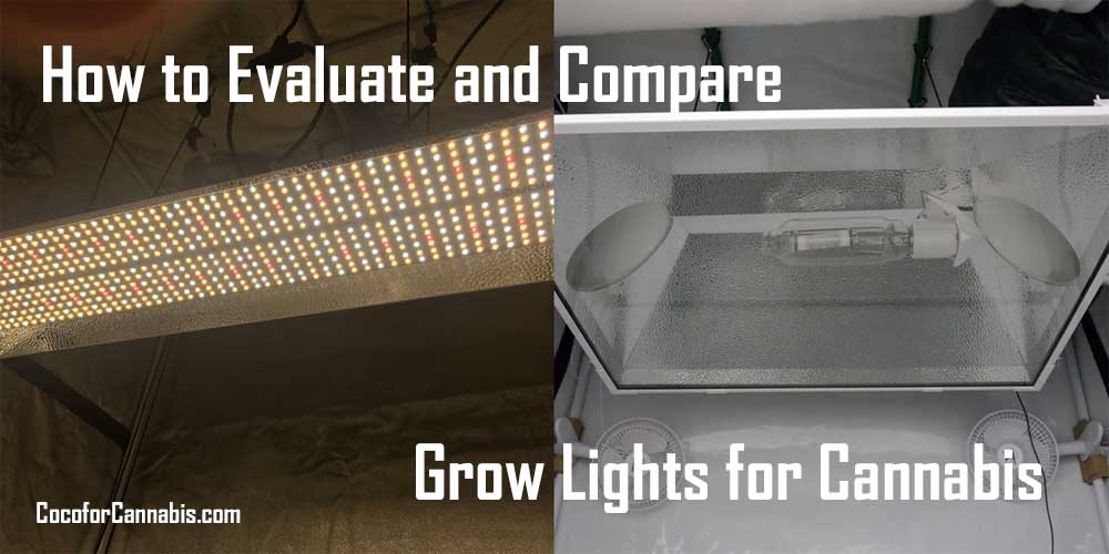 Evaluate-and-Compare-Grow-Lights-for-Cannabis