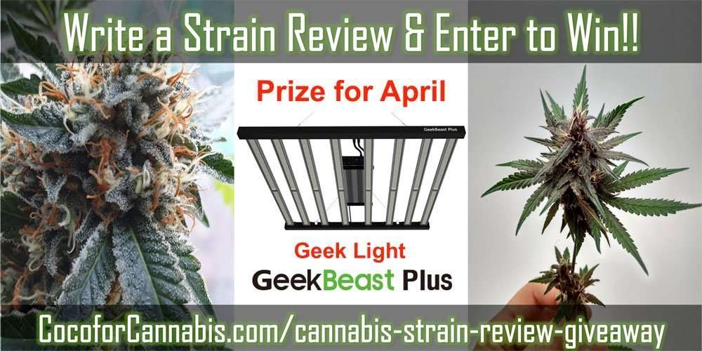 April Strain Review Giveaway