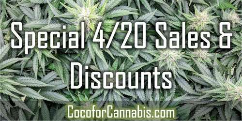 Discounts for 4/20
