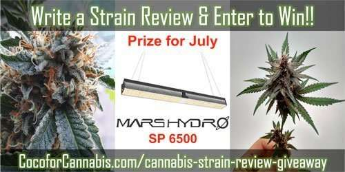 Giveaway for a Mars Hydro SP 6500!