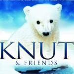 Profile picture of Knut