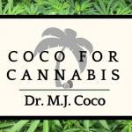Profile picture of Dr Coco
