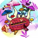 Profile picture of NewEngAutoTrees
